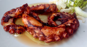 Grilled octopus Royalty Free Stock Photo