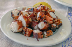 Grilled octopus in pieces on the white plate stock photo
