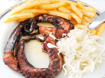 Grilled Octopus Stock Images