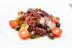 Grilled octopus with vegetables Stock Image