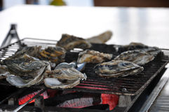 The grilled oyster Stock Photo