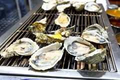 Grilled oyster. On sale in the asian night market Royalty Free Stock Photos