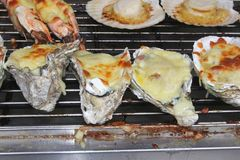Exclusive grilled oysters and gambas with cheese Royalty Free Stock Photo