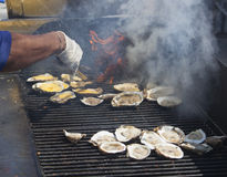 Grilled Oysters 2. Large grill of fresh oysters being cooked Stock Images