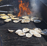 Grilled Oysters 3 Royalty Free Stock Image