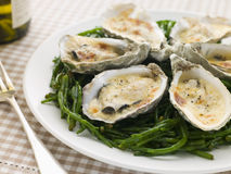 Grilled Oysters with Mornay Sauce on Samphire Stock Photo