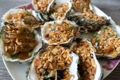 Grilled Oysters With oil, green onion, roasted peanut Stock Photography