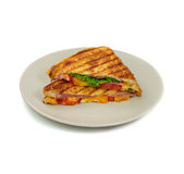 Grilled panini sandwiches on plate. Stock Images