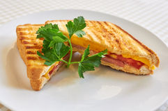 Grilled panini sandwiches Stock Image