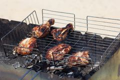 Grilled parts of chicken on the grill cooking on smoldering coal stock image