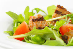 Grilled patty with fresh vegetable salad Royalty Free Stock Images