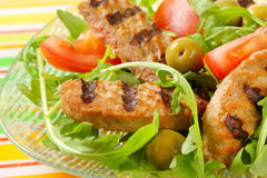 Grilled patty with fresh vegetable salad Stock Image