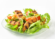 Grilled patty with fresh vegetable salad Stock Photography