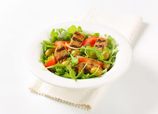 Grilled patty with fresh vegetable salad Royalty Free Stock Photography