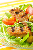 Grilled patty with fresh vegetable salad Royalty Free Stock Image