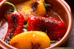 Grilled peppers in bowl Royalty Free Stock Images