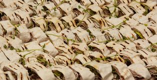 Grilled pita meat with greens closeup stock image