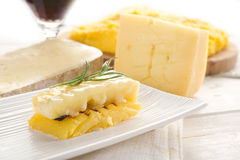 Grilled polenta with cheese Royalty Free Stock Photos
