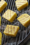 Grilled polenta Royalty Free Stock Photo