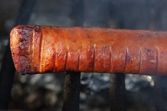 Grilled Polish Sausage. A tasty looking sausage on a outdoor grill Royalty Free Stock Image