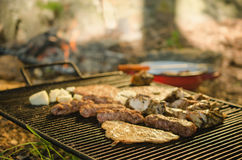 Grilled pork and chicken meat on metal grill Royalty Free Stock Photos