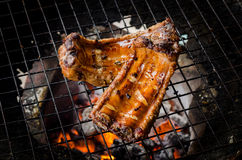 Grilled pork ribs Royalty Free Stock Photography