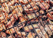 Grilled pork ribs on the grill. Barbecue in the nature at summer Royalty Free Stock Photos