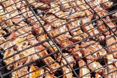 Grilled pork ribs on the grill. Barbecue in the nature at summerGrilled pork ribs on the grill. Barbecue in the nature at summer Stock Images
