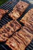Grilled pork ribs on the grill Stock Photography