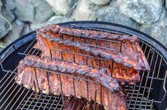 Grilled pork ribs on the rack Stock Images
