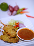 Grilled Pork Satay with Peanut Sauce and Vinegar.Thai Food. Stock Photography