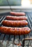 Grilled pork sausages Stock Images