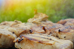 Grilled pork steak BBQ Royalty Free Stock Photo