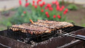 Grilled pork steaks on the grill in the garden, springtime, close up. Shallow depth of the field, 50 fps stock video
