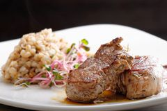 Grilled pork tenderloin with prunes Royalty Free Stock Photography