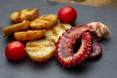 Grilled potato with sea food octopus Royalty Free Stock Photo