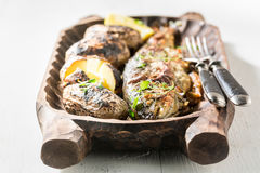 Grilled potatoes and trout fish with herbs and butter Royalty Free Stock Photography