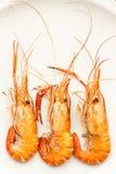 Grilled prawn Royalty Free Stock Photos