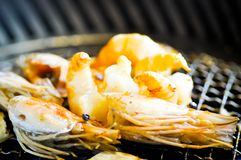 Grilled prawn, grilled shrimp Royalty Free Stock Photography