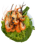 Grilled Prawn isolated background Stock Photography