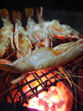 This is grilled prawn Stock Photo