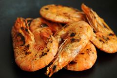 Grilled prawn or shrimp Stock Photography