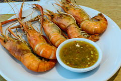 Grilled prawn Stock Photos