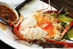 Grilled prawn with spicy sauce Stock Images