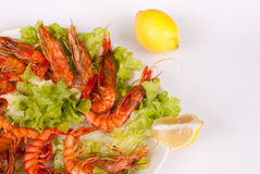 Grilled prawns Royalty Free Stock Image