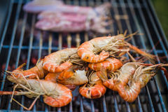 Grilled prawns on the barbecue rack at the garden party Royalty Free Stock Photography
