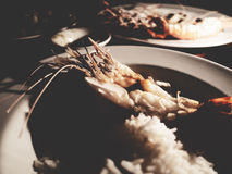 This is grilled prawns and cockle with rice on the white plate u Royalty Free Stock Images