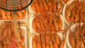 Grilled prawns on the counter of the street market, a device for flies away. stock footage