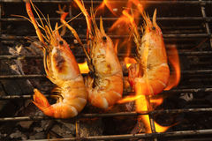 Grilled prawns on flaming Royalty Free Stock Photography