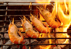 Grilled prawns on flaming Stock Photography